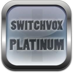 Licence +1 utilisateur (année courante serveur) Switchvox Platinum